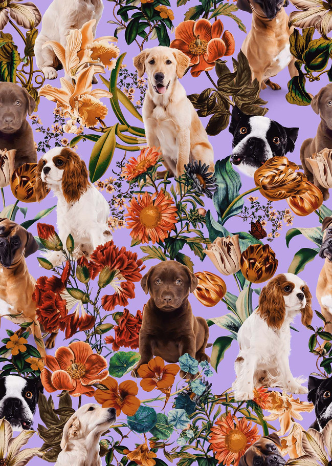 dog and floral pattern copy.jpg