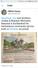 Jewish Journal/Sun Sentinel