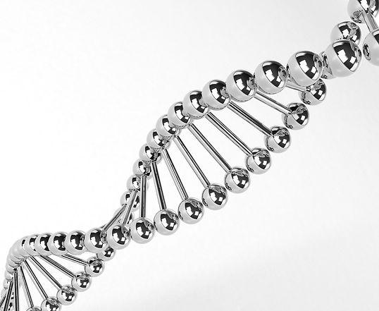 DNA Lactobacillus.jpg