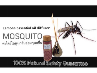 Anti-MosQuito by Natural Way