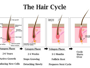 """Hair Root "" contain nutrients suppling  to hair  for thicker hair go long and strong."
