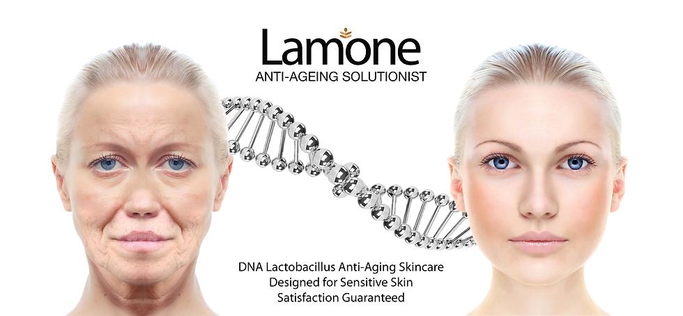 DNA Lactobacillus Anti-Ageing Series-08.