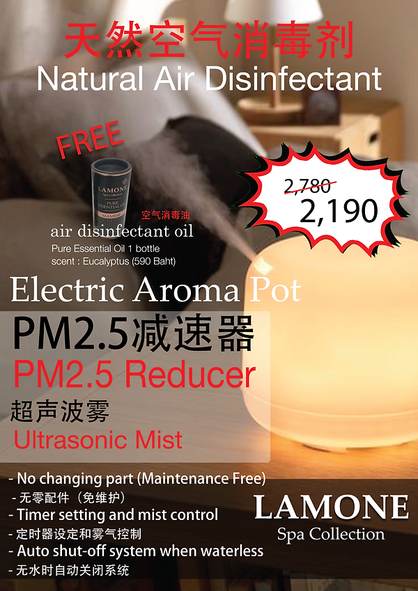 PM25 Electric Diffuser.png