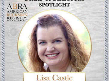 BOD Spotlight - Lisa Castle (Points Manager)
