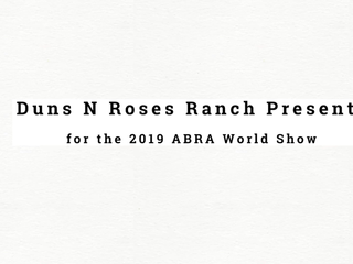 Promotion Video for Duns N Roses ABRA World Show Team!