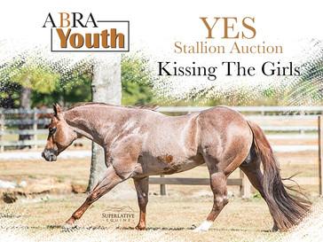 2020 YES Stallion Auction