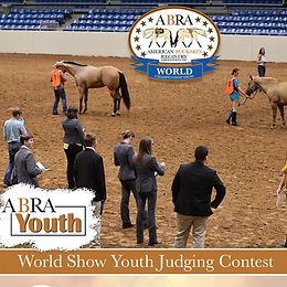 Youth World Show Judging Contest