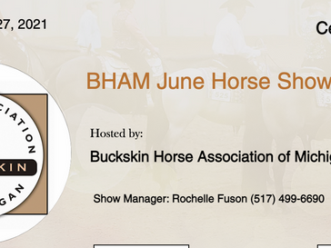 June 26-27 Approved Horse Show in Centreville, MI