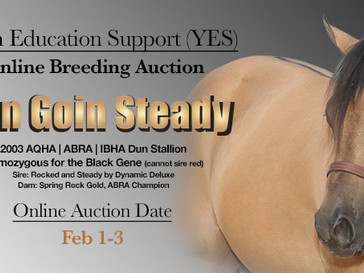 Get Ready for the Youth Education Support (YES) Online Breeding Auction!
