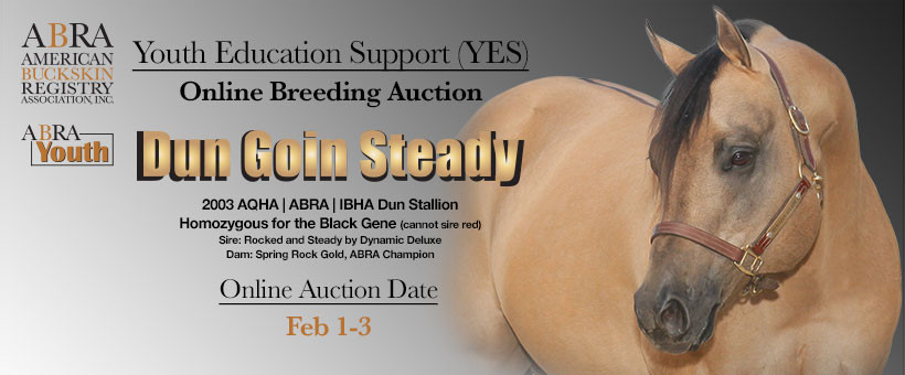 YES Online Auction Advertisement