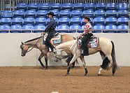 Two buckskin show horses in a western pleasure class