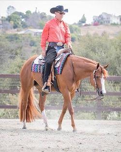 Murray_Horse.jpg