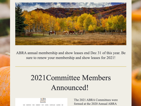 ABRA November Newsletter Delivered