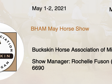 May 1-2 Approved Horse Show in Mason, MI