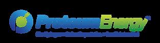 PE_Logo_Tagline_ProperWhiteSpace_PNG.png