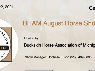 August 21-22 Approved Horse Show in Centreville, MI