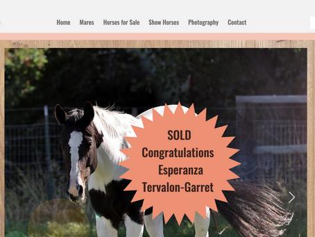 Congratulations to Esperanza Tervalon-Garret - White Lace and Roses Sold!