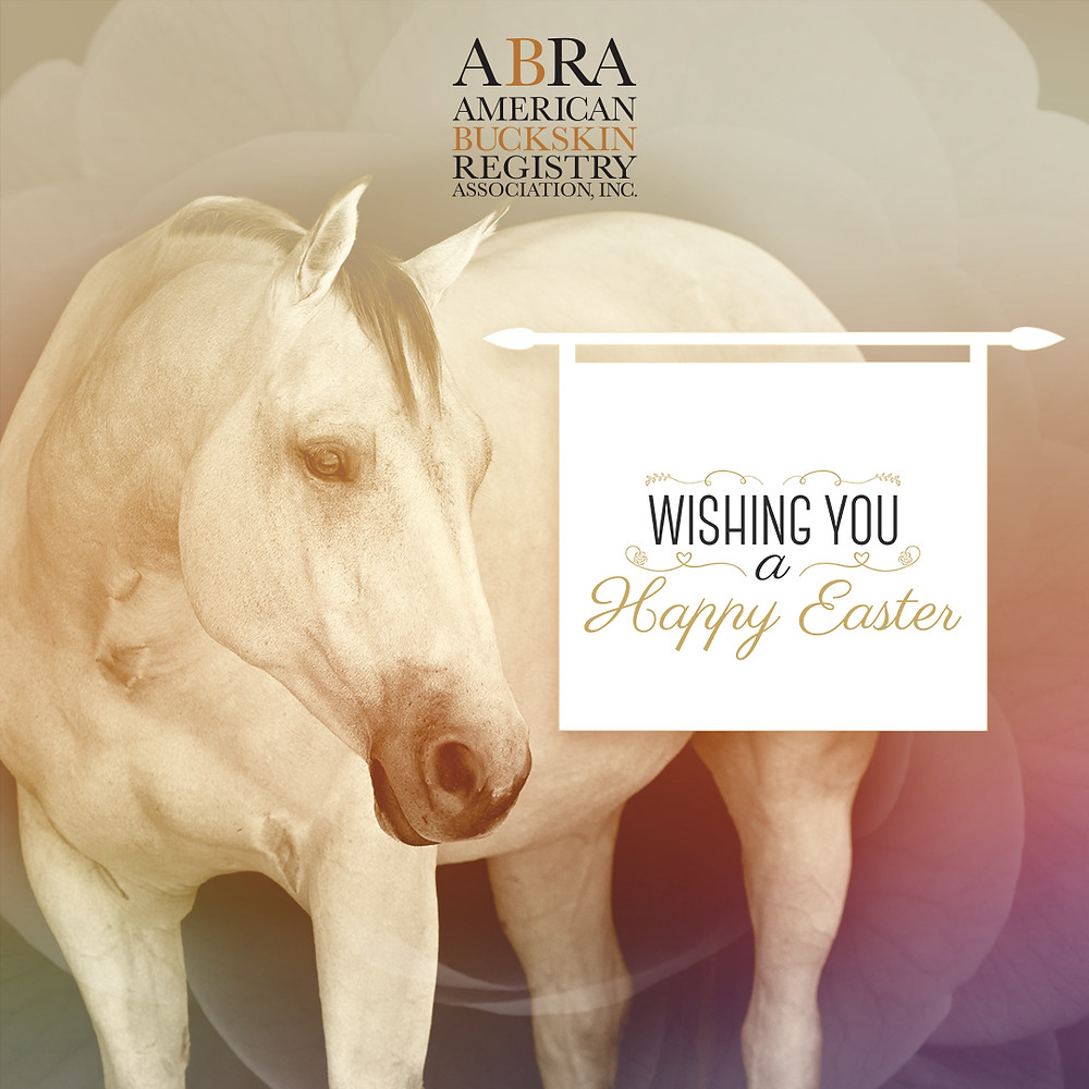 Happy Easter from ABRA, Inc.