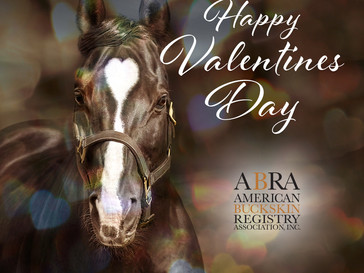 💖Happy Valentines Day from the ABRA 💖