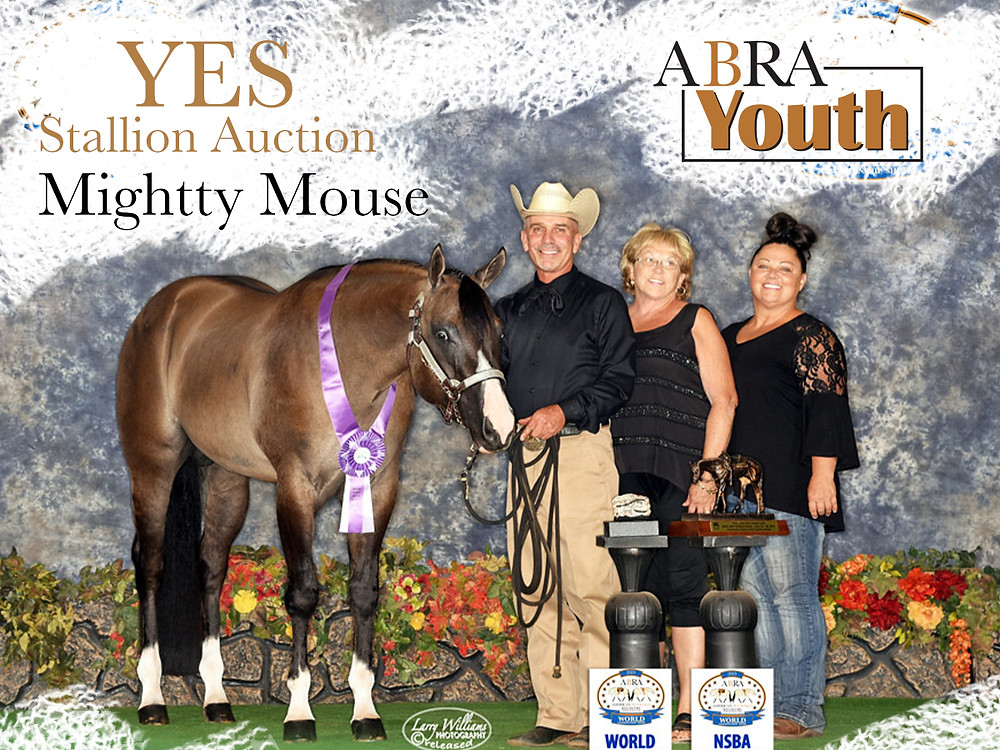 Mightty Mouse AQHA & ABRA Stallion