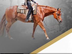 World Show Placings:Fourth Place in L1 Select Horsemanship - Heidi Rasor