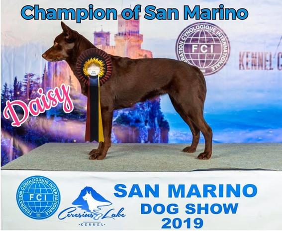 San Marino Champion of Beauty