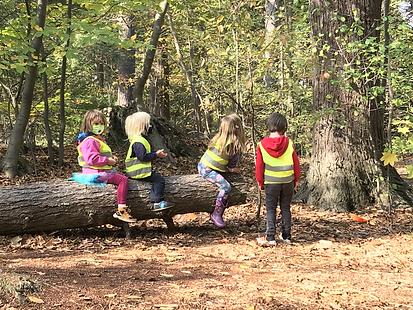 kids on log.HEIC
