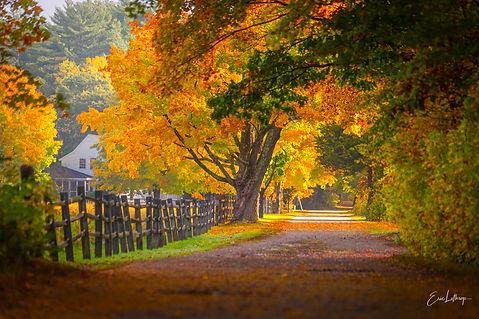 Smith Farm Autumn photo.jpg