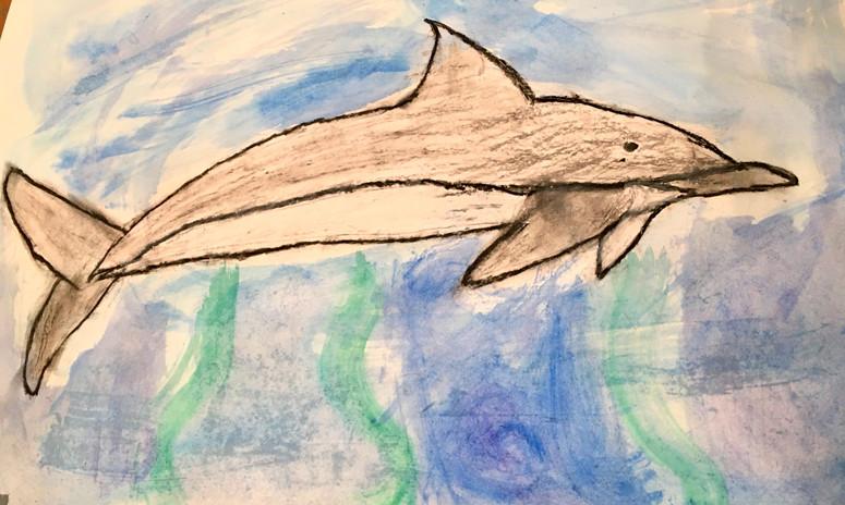 I love my Dolphin!