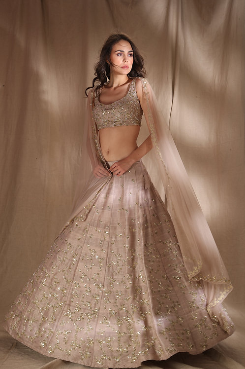 Grey Brown Raw Silk Lehenga