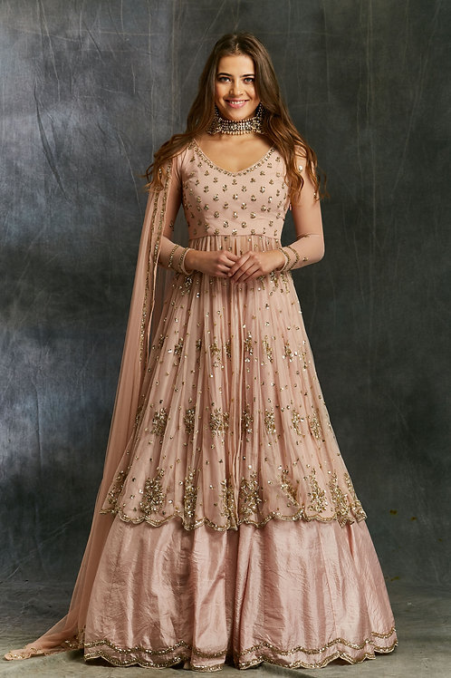 PInk Sequin Georgette with Pink Silk Skirt
