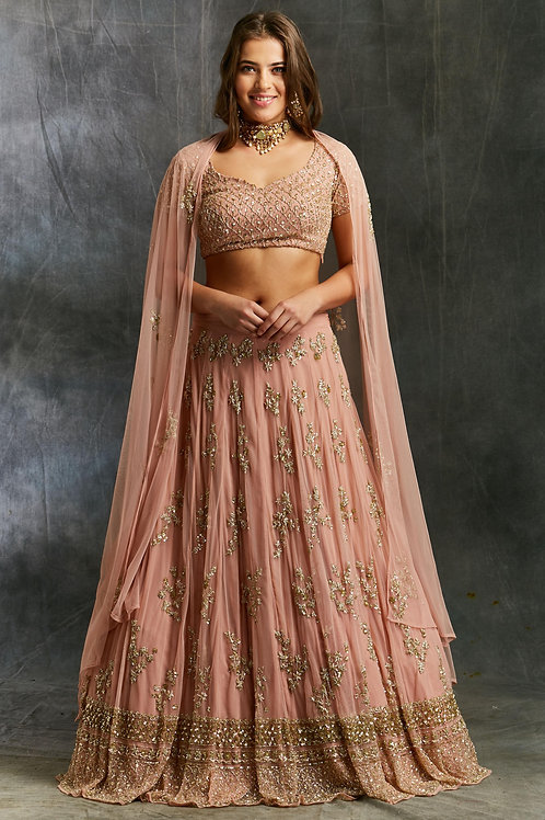 Peach Sequins Jaal Border Lehenga