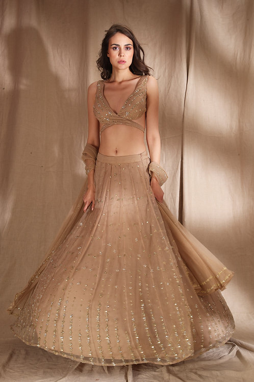Pale Brown and Gold Lehenga
