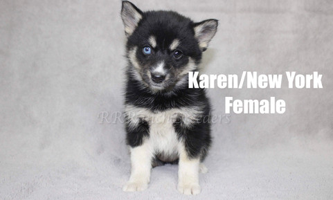 Female $2,000 READY TO COME HOME NOW