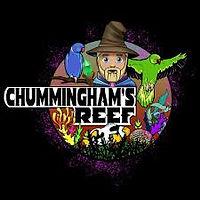 chumminghams reef.jpg