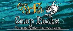 onemadfish2.jpg