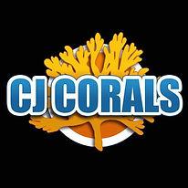 CJ Corals.jpg