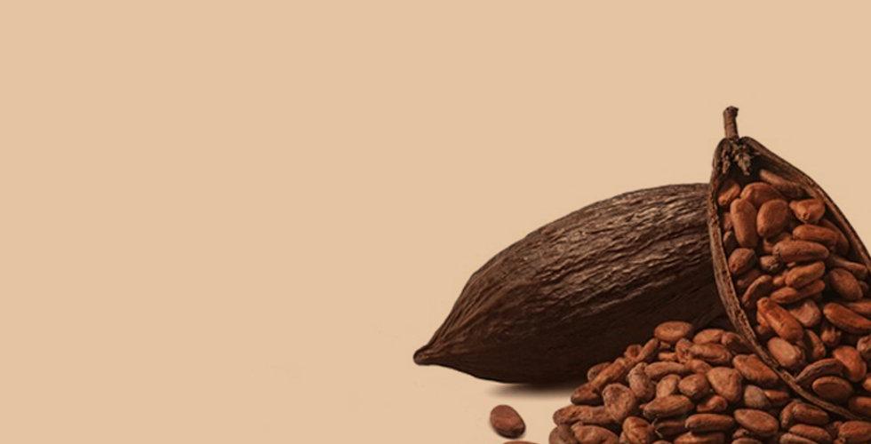 cocoa .jpg