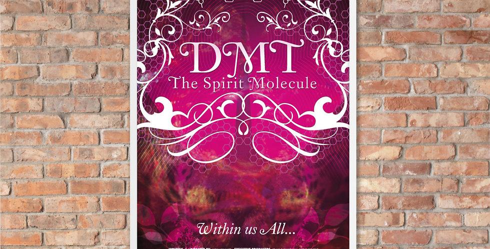 Framed DMT: The Spirit Molecule Poster