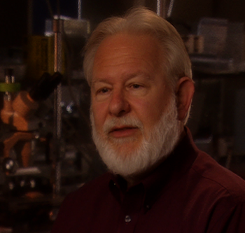 DAVID NICHOLS PhD