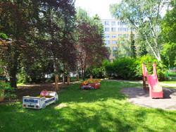 zahrada (4)