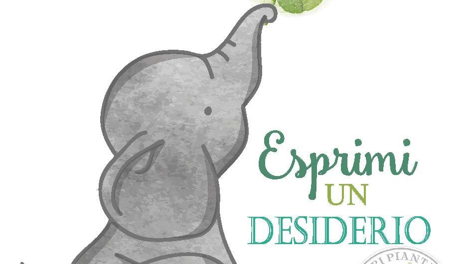 Elefantino Fortunato