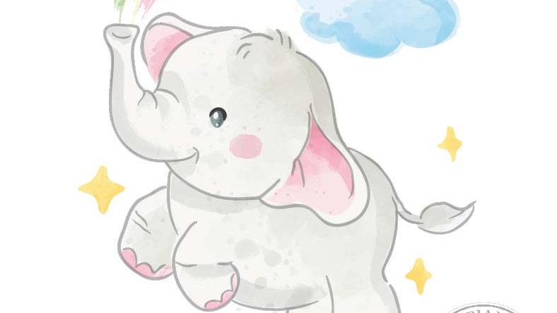 Elefantina con arcobaleno