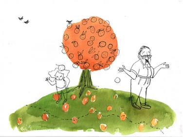 Abuelo's orange tree