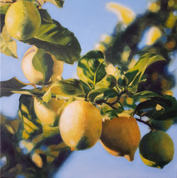 Sunshine and lemons_oil on canvas_30x30cm SOLD