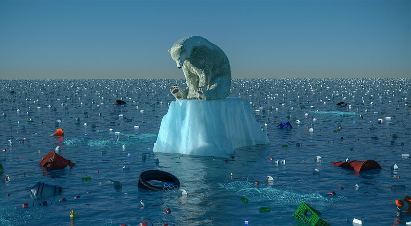 climate-change-bear_edited.jpg