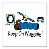 keep on wagging.jpg