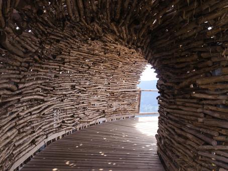 Peran Bambu Dalam Dunia Seni dan Pembangunan