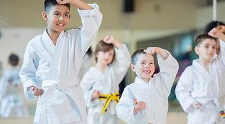 dojo karate.jpg