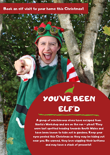 YOU'VE BEEN ELF'D (FAMILY).png